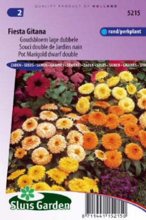 5215 nechtík calendula_officinalis_fiesta_gitana_mix_full