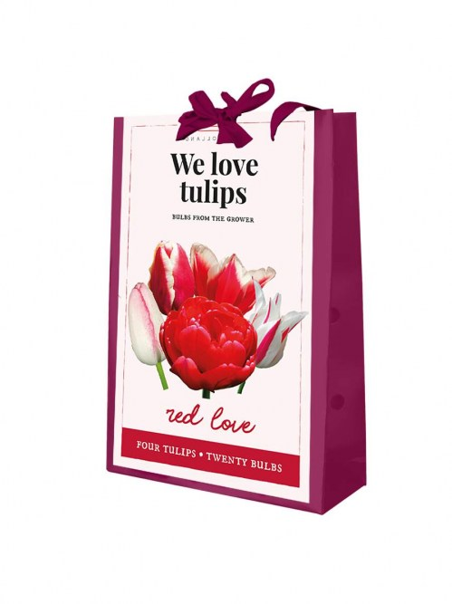 721.280 We Love Tulips - Red Love