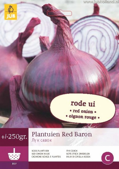 PLANTUIEN-RED-BARON